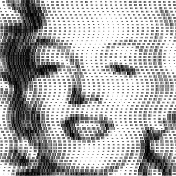 Scott Blake's barcode mosaics