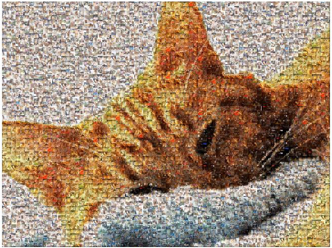 Resource for Everything Photo Mosaic